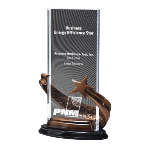 Bronze Brilliance Star Award Rectangle 1