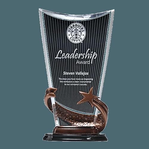 Bronze Brilliance Star Cup 1
